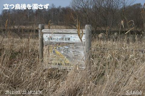 01昔の長流川 護岸.JPG