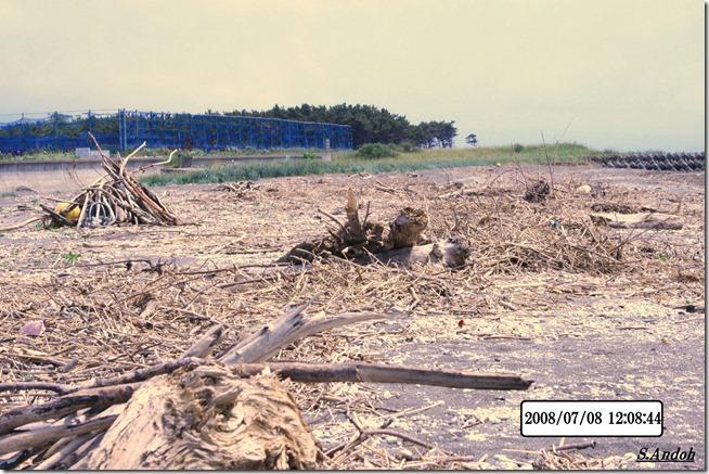 8氾濫の砂浜