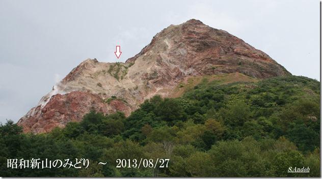 20昭和新山のみどり