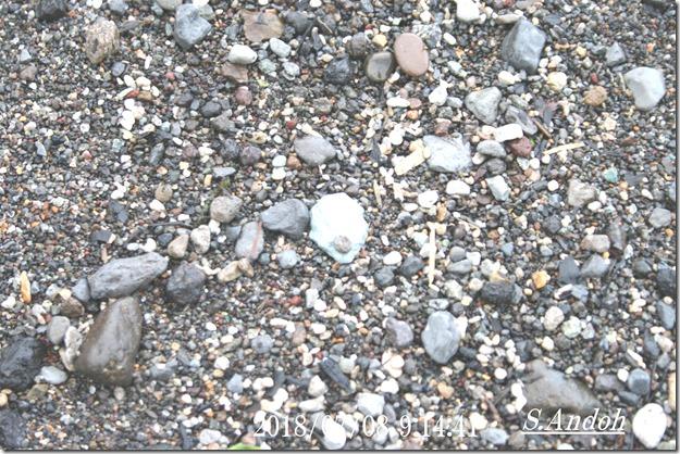 25青く光る石